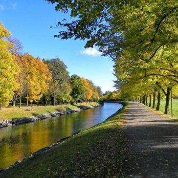 Nu startar höstens friskvårdsvandringar